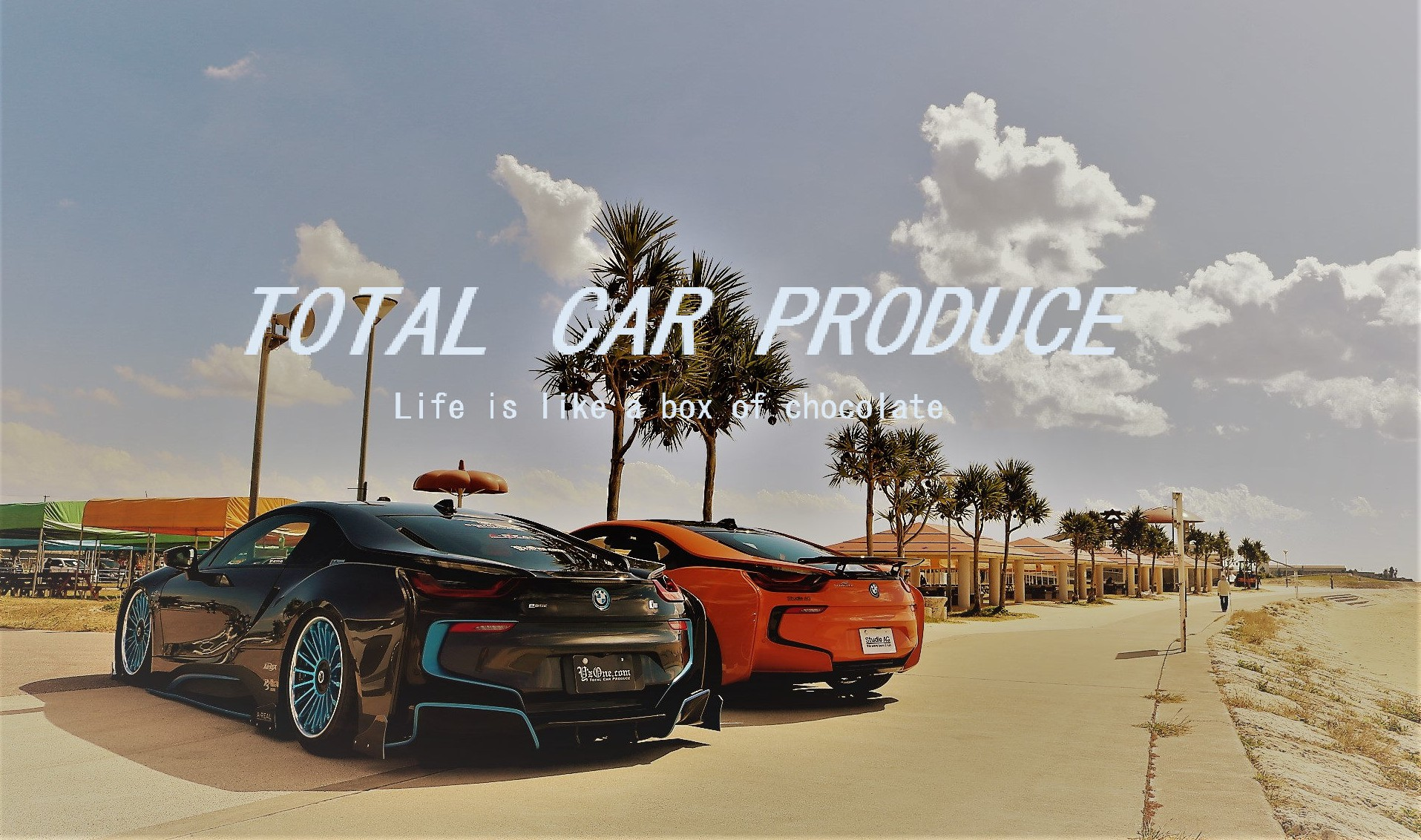 TOTAL CAR PRODUCE Life is like a box of chocolate.