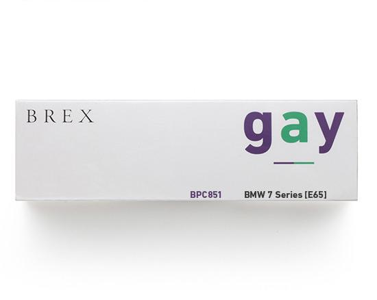 gay_BPC851 27
